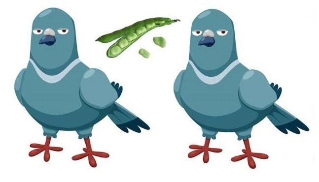 Ottieni due piccioni con una fava
