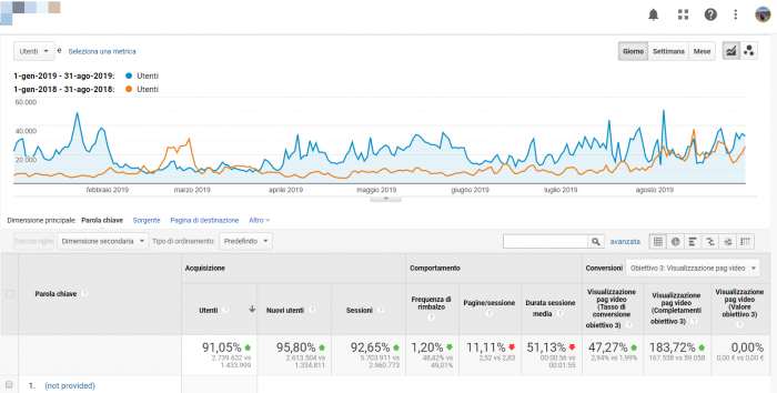 screen google analytics traffico organico seo